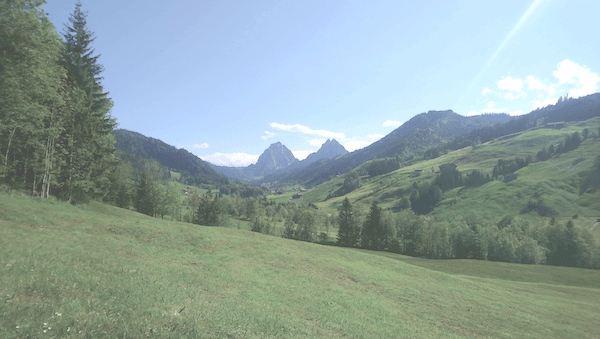 Trail Run Einsiedeln